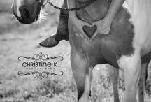 Ideer til billede med hestene