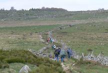 Chemin Urbain V / Photos en chemin...