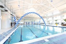 The Health and Aquatic Club / The beautiful Health and Aquatic Club located at Bayside Fenwick Island with an indoor pool, state of the art fitness center, saunas, hot tub and fresh juice bar & cafe!