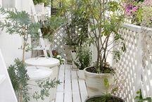 Balcony vs garden