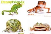 Kalender 2014 - Tiere & Wildlife: Werbeartikel, Werbekalender, Wandkalender, Industriekalender, Kunstkalender
