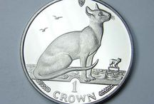Cat Coins / by Bellevue Rare Coins