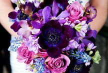 Colourful Bouquets