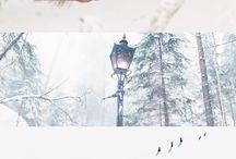 Bookish / by Liz Tubman