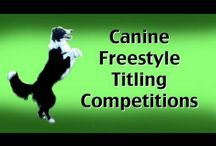 Kikopup YouTube Videos Rock / My best friend Emily Larlham is an amazing dog trainer and known around the World for her force free training.  Emily and I both train dogs the same way and have presented many canine freestyle seminars together.  We both founded SD Canine Freestylers, in hopes to get others involved in this fun sport and training it in a way that does not use force, intimidation or corrections.  This board is showcase Emily's AMAZING techniques that ANYONE can use!  Check out Pam's Dog Academy as well! :)) / by Pam's Dog Academy