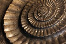 - spirals -