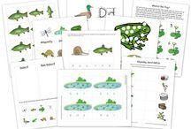 MFW - Unit 22 Frog / My Fathers World Homeschool - Kindergarten