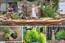 Fairy gardens / by Summer Doss