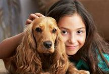 Dogs & Humans / Celebrating the bond between Dogs & Humans.