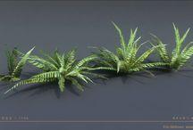 Foliage\plants  - 3D