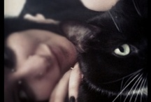 Creatures / Animals.. mainly my cat, Onyx <3