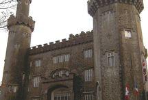 ML's Irish Heritage