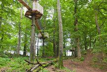 Freizeittipps in der Vulkanregion Vogelsberg / Dem Uhu tief in die Augen blicken oder flott die Sommerrodelbahn hinabsausen, in den Baumwipfeln schweben oder einem echten Keltenfürsten begegnen - hier könnt ihr einiges erleben!