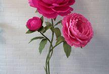 flori mari