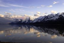 WILD Jackson Hole / by Jackson Hole Wildlife Film Festival