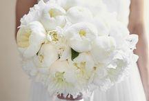 Tematyczne wesele i ślub / Ślubne inspiracje i realizacje wykonane przez pracownię florystyczną Metaflora.