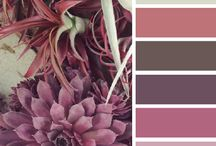 Color Palettes. / by Nan Campbell