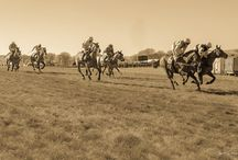 Point to Point Racing / A country event involving horse racing over fences for hunting horses and amateur riders.