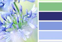 сочетания цветов