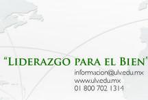 Separadores / Separadores de nuestra oferta académica, COLIVI, Academias, Licenciaturas, Ingeniería y Posgrado