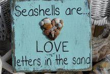 the Beach ::