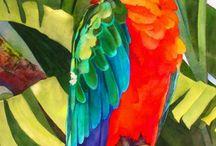 Kuşlat