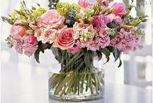 FLOWERS & GARDEN / by Jolie Lofties