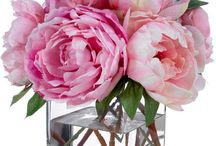 silk floral for the home / by Kristy Hadley