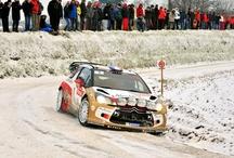 WRC Monte-Carlo 2013