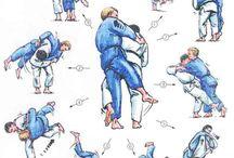 Sports combats