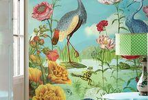 oiseau magnifique