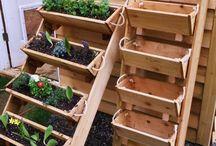 záhrada, balkón