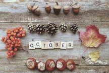 Nuovo mese