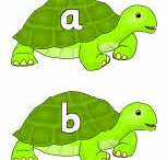 Turtle and Mouse