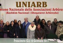 A.News Arbëria, Uniarb