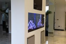 Bespoke Installation in Hertfordshire / Aquatic Gems Ltd designed and installed this stunning Malawi Cichlid aquarium. It provides a focal point for an open plan kitchen in Hertfordshire.  www.aquaticgems.co.uk