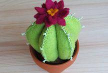 cactus panno