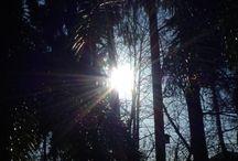 Sonnige Momente / Egal zu welcher Jahreszeit, auch die Sonne ist ein sehr fotogenes Wesen!