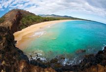 Air Maui Blog / Learn about everything Maui right here from local experts! Restaurants, best beaches, proposal ideas and more.