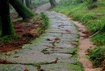 PaThWaYs, LaNeS aNd AlLeYs / I love nature. . The breeze on your face and the smell of the air. / by Julie !
