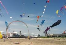 2012 Wildwoods International Kite Festival / by Frank Iacono