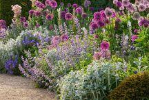 Olcsó kerti