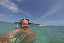 Dry Tortugas National Park = Fort Jefferson snorkeling & more / On #my #birthday in #2013 #beefcornelluga Explores a #19thCenturyFort and #snorkel #snorkeling #crystal #clear #water #incredible #marinelife #70miles #113km #westofKeyWest lies the #remote #DryTortugasNationalPark #100squaremile #park #seven #smallislands  #boat or #seaplane #magnificent #FortJefferson #picturesque #bluewaters #superlative #coralreefs #vastassortment of #birdlife that frequent the area via #NPS #website / by David Heath