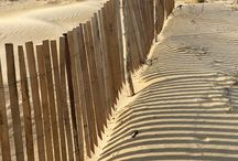 Ripristino dune marittime panelli in acacia / Come aiutare la natura a ricreare il sistema vegetativo a salvaguardia dall'erosione marittima