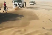 Sand Stabilization / Sand Stabilization is an important way to prevent sand from blowing and accumulating on roads which results in severe and unsafe driving conditions.  http://www.soilsolutions.com/our-solutions/sand-stabilization/