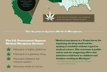 cannabis infographs