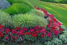 Landscaping / by Debi Morrow