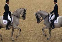 Hevosvideoita / Hyviä ja huonoja esimerkkejä ratsastuksesta, videomuodossa.