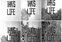 that's (my) life / a 100cm (H) x 70cm (W) framework about life. the highs and lows, the exposures and experiences, the individualistic and idealistic characteristics of life. feel the interaction and connection with the hand-drawn related words and phrases to see if you pause and relate.