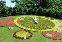 zegary kwiatowe